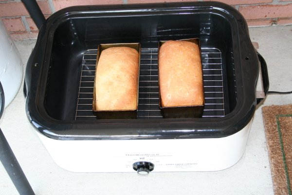 What can you cook in a roaster oven? Well, as celebrations nigh, you're likely to wish your electric roaster oven away, right? You're in a quagmire on whether it could serve any other purpose apart from cooking a turkey!