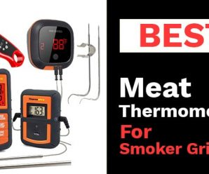 Best Meat Thermometer for Smoking
