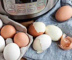best hard boiled egg cooker