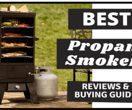 Best Propane Smokers