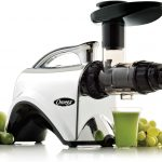 Best Commercial Masticating Juicer