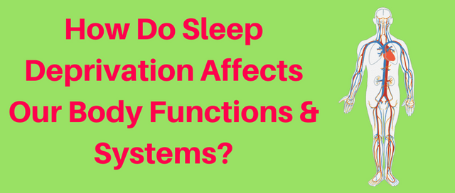How Sleep Deprivation Affects Digestion