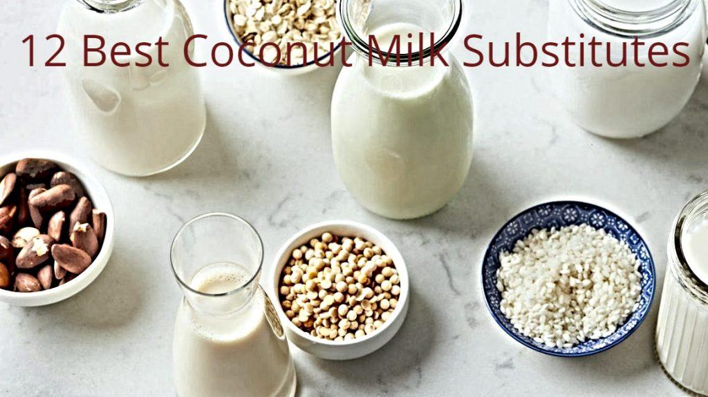 Coconut Milk Substitute