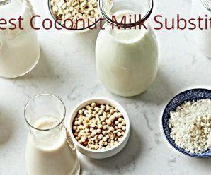 Best coconut milk substitute